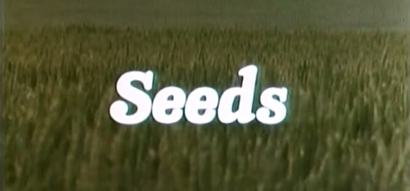 Seeds580x270